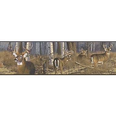 Inspired By Color™ Borders Deer Wallpaper, Brown