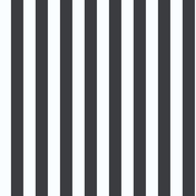 Inspired By Color™ Black & White Linen Stripe, Metallic Silver With White
