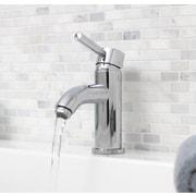 Premier Faucet Essen Single Handle Bathroom Faucet; Chrome