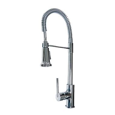 Aqueous Faucet Spartacus One Handle Single Hole Kitchen Faucet w/ Pull Down Spray; Chrome