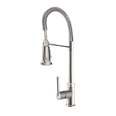 Aqueous Faucet Spartacus One Handle Single Hole Kitchen Faucet w/ Pull Down Spray; Stainless Steel