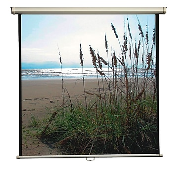 Mustang Matte White Manual Projection Screen; 60'' H x 60'' W