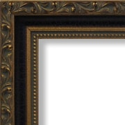 Craig Frames Inc. 1.28'' Wide Ornate Picture Frame; 16'' x 20''