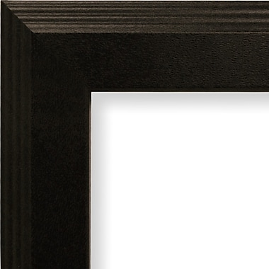 Craig Frames Inc. 1.27'' Wide Smooth Picture Frame; 12'' x 16''