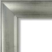 Craig Frames Inc. Antique Brushed 2'' Wide Complete Picture Frame/Poster Frame; 5x7