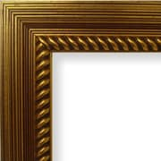 Craig Frames Inc. 2.13'' Wide Painted Ornate Wood Grain Picture Frame; 24'' x 24''