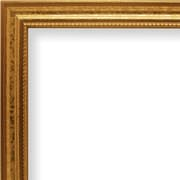 Craig Frames Inc. 0.75'' Wide Picture Frame; 13'' x 19''