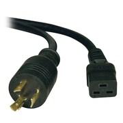Tripp Lite 12' Heavy Duty Power Cord, Black