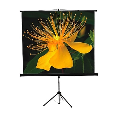 Mustang Mustang Black Portable Projection Screen; 70'' H x 70'' W
