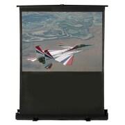 Buhl Matte White Portable Projection Screen; 80'' diagonal