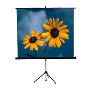 Mustang Mustang Black Portable Projection Screen; 84'' H x 84'' W