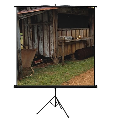 Mustang Matte White Portable Projection Screen; 80'' diagonal