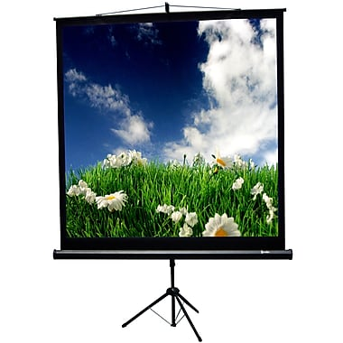 Recordex Matte White Portable Projection Screen; 60'' H x 60'' W