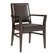 Sunpan Modern Citizen Arm Chair; Brown