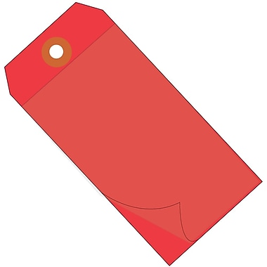 BOX 6 1/4in. x 3 1/8in. #8 Self Laminating Tags, Red