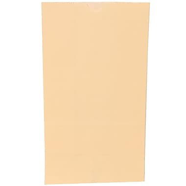 JAM Paper® Kraft Lunch Bags, Large, 6 x 11 x 3.75, Ivory, 500/box (692KRIVB)