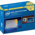 Intel® 530 Series 120GB 2.5in. SATA MLC Internal Solid State Drive, Retail Pack