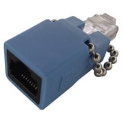 Shaxon MARFM-LB RJ45 Male Rollover Adapter, Blue