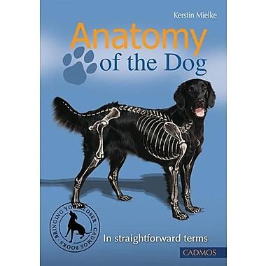 Anatomy of the Dog: In Straightforward Terms