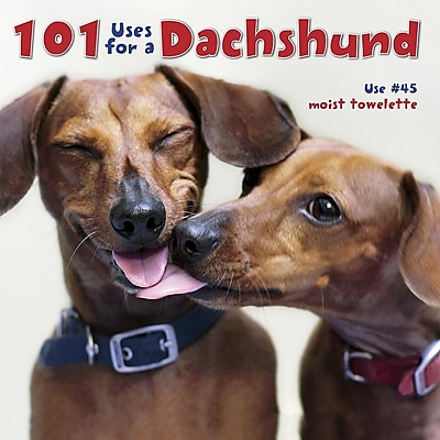 101 Uses For A Dachshund 615806