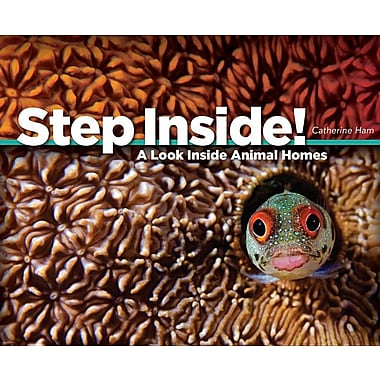 Step Inside!: A Look Inside Animal Homes