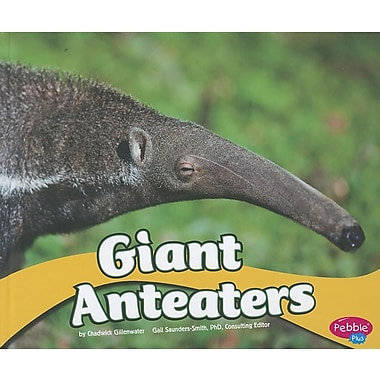 Giant Anteaters (South American Animals)