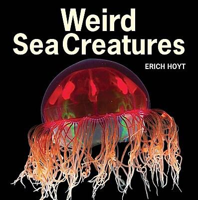 Weird Sea Creatures 586543