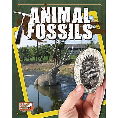 Animal Fossils (If These Fossils Could Talk)