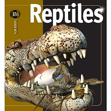 Reptiles (Insiders)