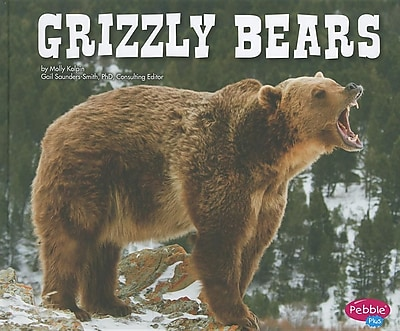 Grizzly Bears (North American Animals) 568473