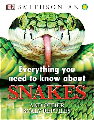 Everything You Need to Know About Snakes (Everything You Need Know) 610437