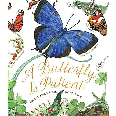 A Butterfly Is Patient