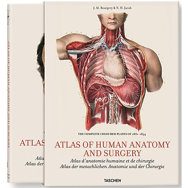 Bourgery: Atlas of Anatomy