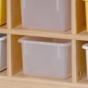 Steffy 25 Compartment Cubby; Colored