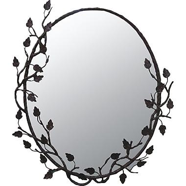 Quiescence Aspen Mirror; Black