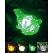 Homebrite Solar Solar Frog with Color Change Lighting
