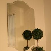 Spancraft Glass Regency Westminster Frameless Mirror; 36'' H x 24'' W