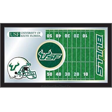 Holland Bar Stool NCAA Football Mirror Framed Graphic Art; South Florida