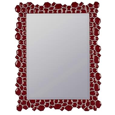 Cooper Classics Cimarron Mirror