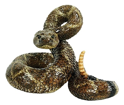 Michael Carr Western Diamond Back Coiled Snake Statue WYF078276759981