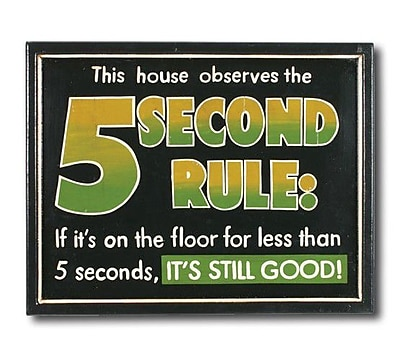 RAM Game Room ''5 Seconds Rule'' Outdoor Sign WYF078276761590