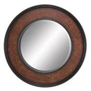 Aspire Mirror