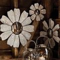 Cape Craftsmen Bohemian Rhapsody Nature's Charm Wall Mirror (Set of 3)