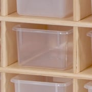Steffy 25 Compartment Cubby; Clear