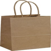 "Bags & Bows® Paper Shoppers Mini Cub, 5-1/4"" x 3-1/2"" x 8-1/4"", 250/Pack"