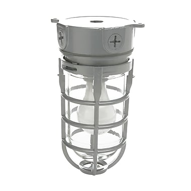CCI® Incandescent Wall Mount Weather Tight Light Fixture, 100 W, Silver