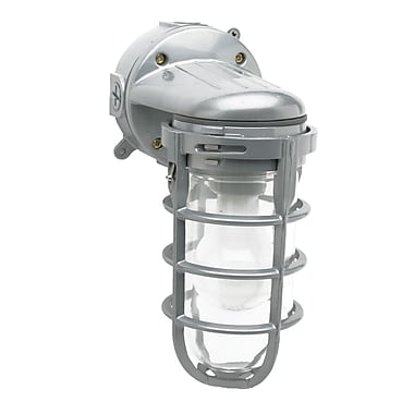 CCI® Incandescent Ceiling Mount Weather Tight Light Fixture, 100 W, Silver