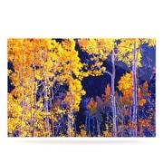 KESS InHouse Aspen Trees by Maynard Logan Photographic Print Plaque