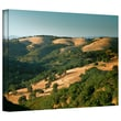 ArtWall in.Hills of Californiain. Gallery Wrapped Canvas Art By Steve Ainsworth, 16in. x 24in.