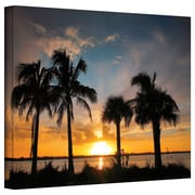 """ArtWall """"Tropical Sunset"""" Gallery Wrapped Canvas Arts By Steve Ainsworth"""